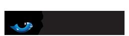 Silverstein Logo
